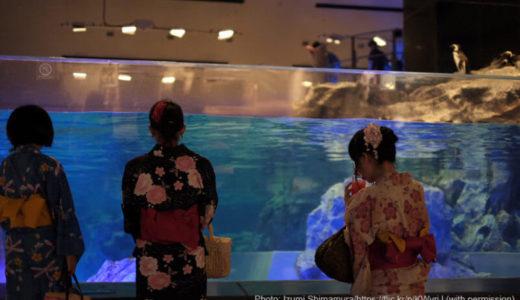 東京「すみだ水族館」の料金・営業時間・アクセス・見どころ