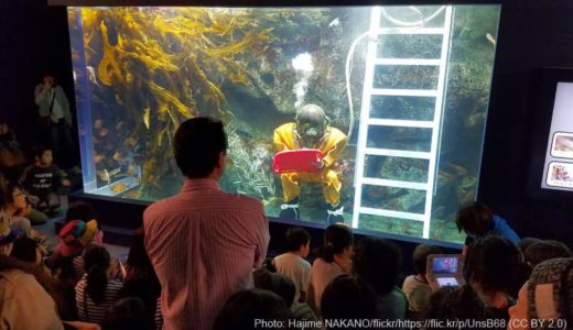 Moguranpia Machinaka Aquarium (Iwate) – Access & Fees