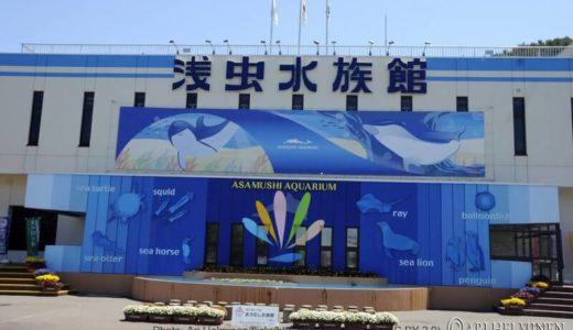 青森「浅虫水族館」のイルカショー・料金・営業時間・割引チケット