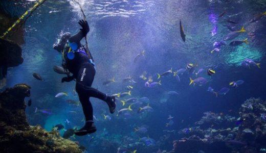 福井県海浜自然センターなら不思議な体験ができる!?体験講座も充実