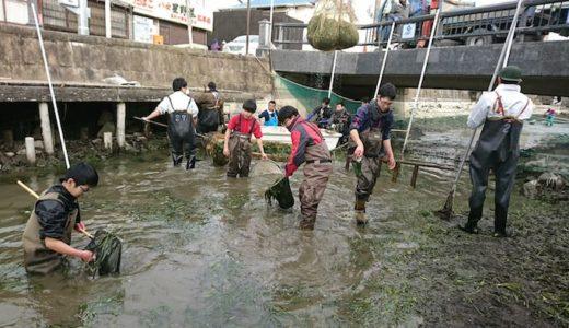 【PR】堀割大調査…いざ生き物採集へ行こう!やながわ有明海水族館