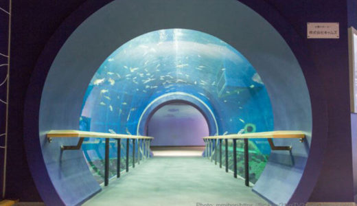 京都・大阪からアクセスOK!国内最大級「滋賀県立琵琶湖博物館」を徹底解説