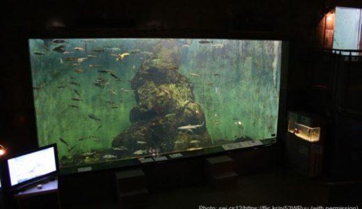 Shibetsu Salmon Museum (Hokkaido) – Access, Hours & Fees