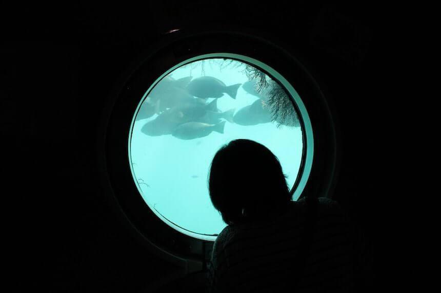 足摺海底館