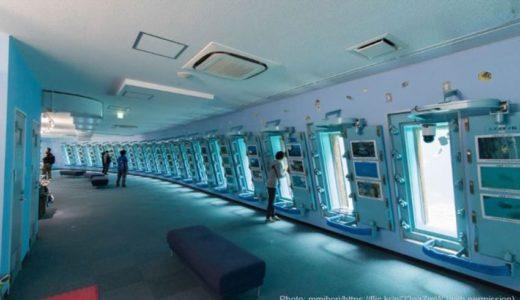 沖縄の水族館「宮古島海中公園」の料金・所要時間