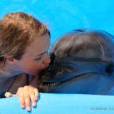 水族館で働きたいあなたへ- 就職前に「今やっておくべき7つのこと」