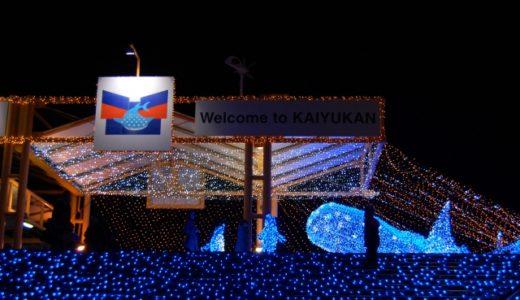 インスタ映え間違いなし!クリスマスに訪れたい東京都内の水族館5選